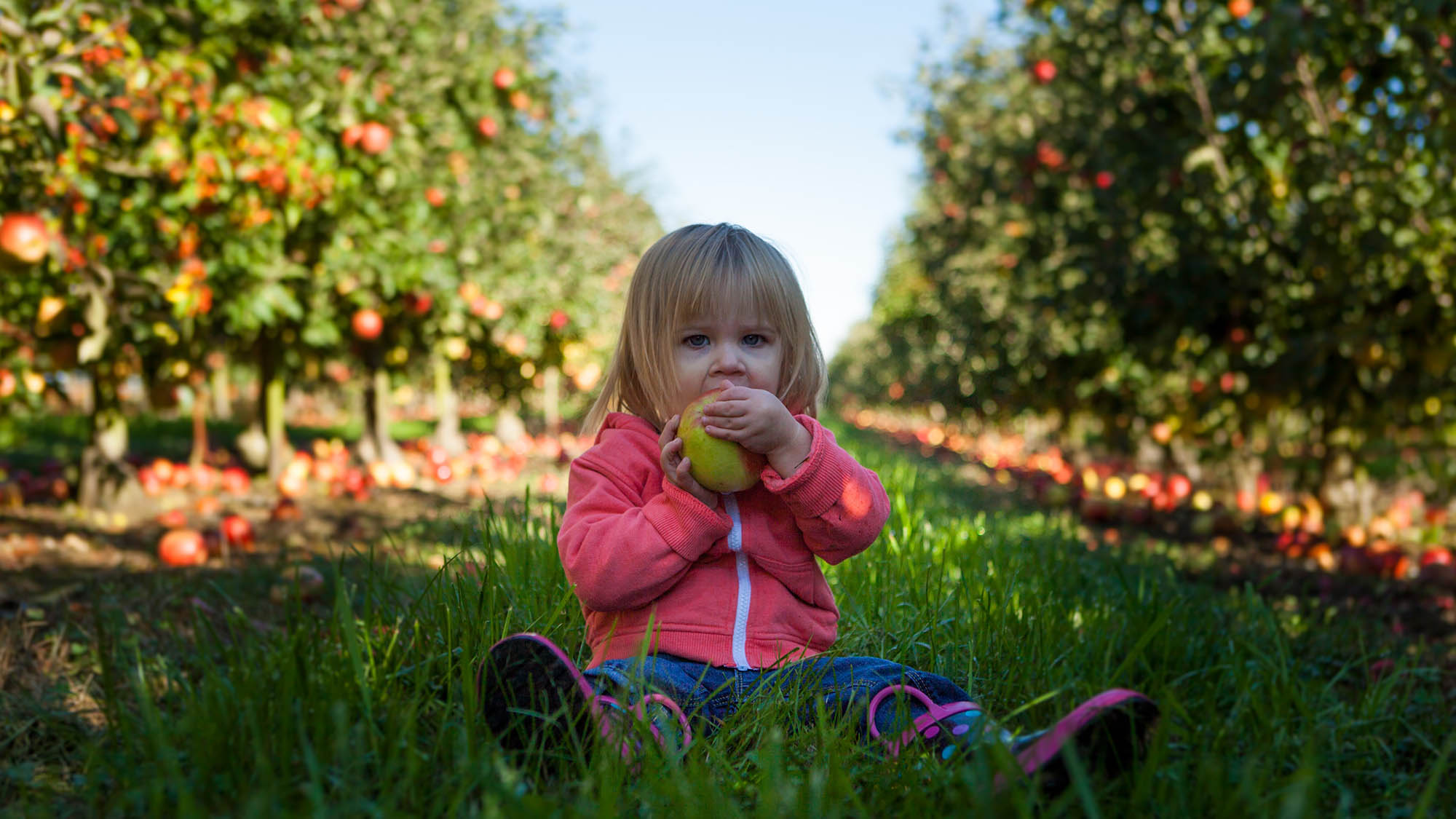 Girl Eating Apple at Orchard