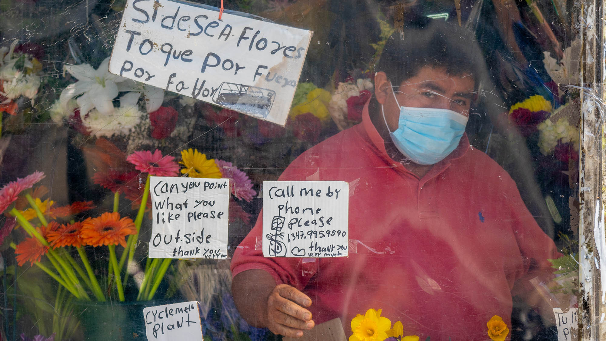 Masked man behind plant window selling flowers in Brooklyn